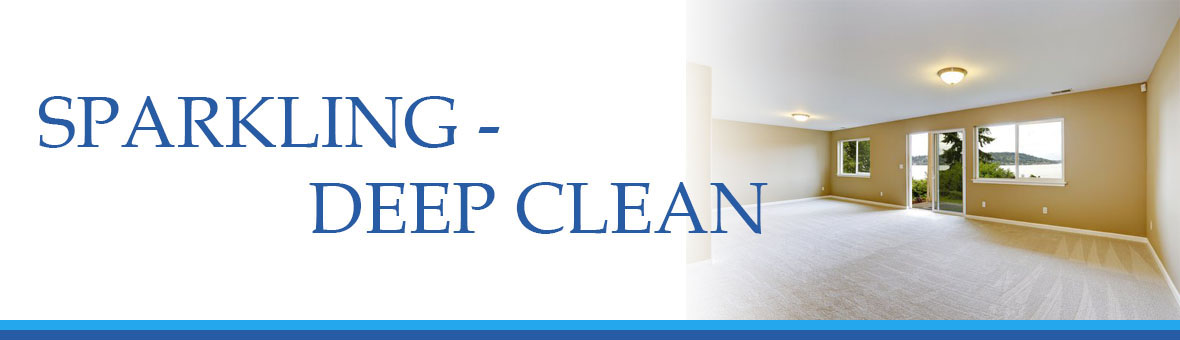 Sparkling Windows - deep clean